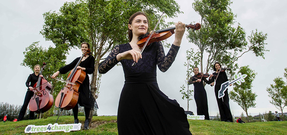 Playing violins in park
